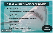 Tsa017 Great White Shark Cage Diving