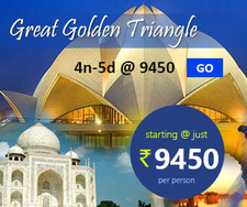 Golden Triangle Tour At 9450