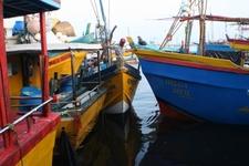 Fish Market Beruwela