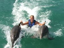 Dolphin Cove Fun