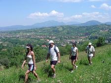 Hiking In Bran Area 1 Mountain Biking Downhill