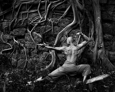Yoga And Roots