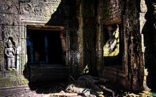 Preah Khan Temple - Khmer Giant Cat