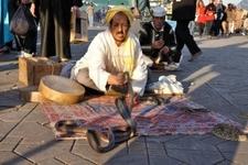 8038466 Snake Charmer At Djemaa El Fna Square In Marrakesh Morocco Photo Taken At 22 Of November 2008