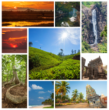 Tour With Recharge Tours In Sri Lanka