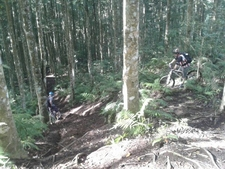 Bedugul To Tabanan - Advanced Mtb Tour