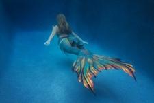Mermaid Tail New Design 2016
