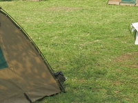 Red Rocks Camp