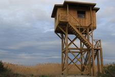 Birdwatch Towers