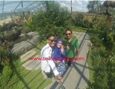 Honeymoon Romantis Di Bali