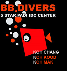 Bb Divers Logo Website 2014 K Chang