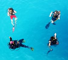 Bb Divers Pics 8