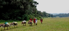 Jans Camp Maasai Trails Guests With Guides 8 1200x540