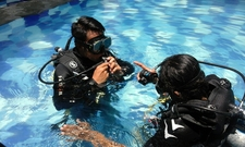 Padi Courses Open Water Pool