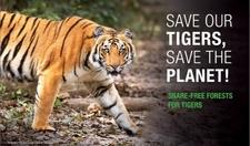 Taiger Save