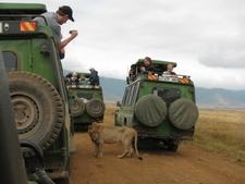 Tanzania Serengeti Adventure 7