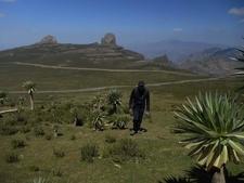 Mount Abuna Yosef With Access Eco Trekking Ethiopia Tours