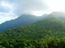 View Of Ba Vi National Park