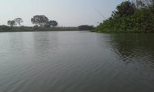 Nawegaon Dam