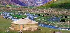 Altai Ger Pan Front500