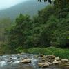Lê Nin Stream In Pác Bó Tourism Area Near The Cave