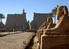 Luxor Temple With Sphinxe