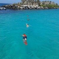 Snorkeling At Santa Fe Island