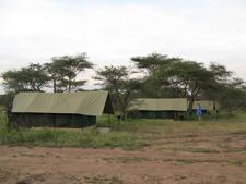 Avt Safari Tents 11