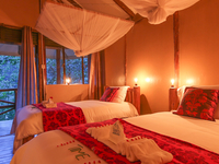 Gorilla Safari Lodge -Bwindi Impenetrable Forest