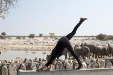 Yoga Safari Etosha