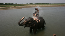 Chitwan National Park3 1