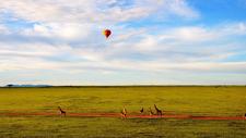 Masai Mara 9