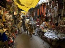 Narrow Streets And Markets Of Varanasi