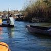 Okavango River Mokoro