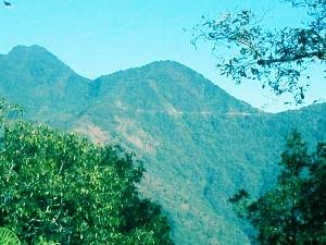 Monte Pauna
