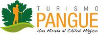Logo Pangue Transbank