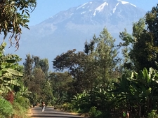 Shot From The Very Bottom Of Africas Highest Mountain Mt Kilimanjaro N