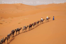 Cameltrekking In Morocco Sahara Desert
