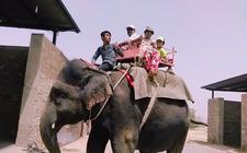 Elephant Village B