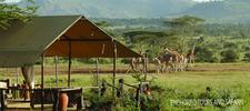 3dayskenyacampingsafari