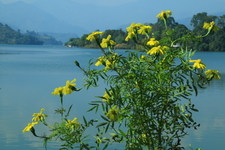 Pokhara And Phewa Lake