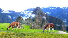 Inca Trail To Machupicchu Inkayni Peru Tours