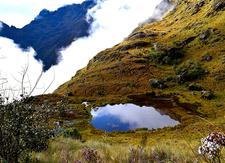 Inca Trail To Machupicchu Inkayni Peru Tours 3