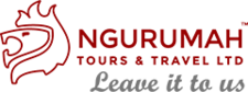 Ngurumah Logo