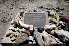 The Spot Where The First P. Boisei Was Discovered In Tanzania