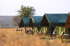 Serengeti Wildcamp 4