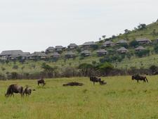 Tour Tanzania8