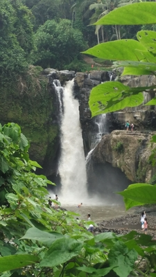 Waterfall Bali