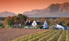 Vineyards Mountain View Paarl Wine Route South Africa