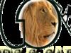 God Bless tours and Safaris